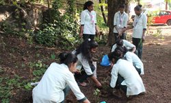 Plant workshop